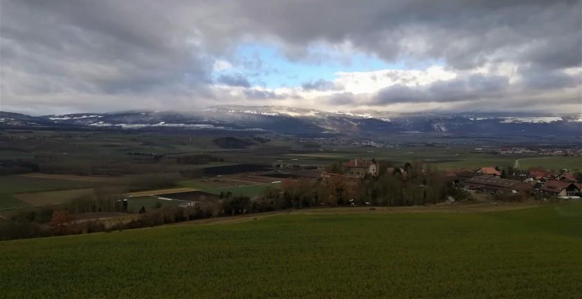 campos, Suiza, cultivos, rural