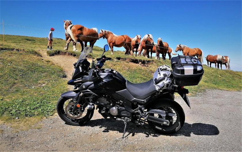 caballos, motos, naturaleza
